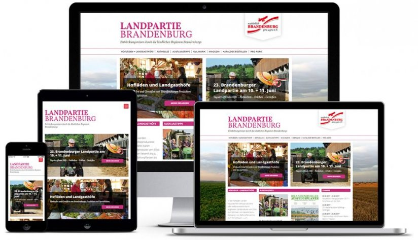 Responsive Website-Konzept