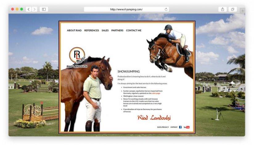 Website und Logo für Riad Landoulsi