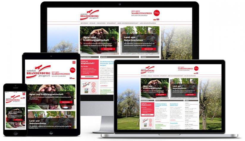 Responive Web-Konzept für pro agro.